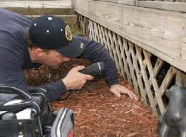 inspection sous terrasse